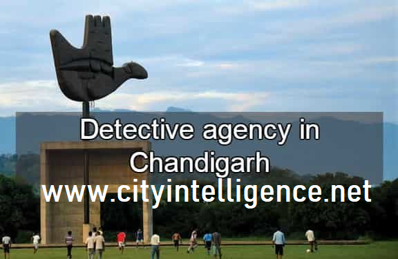 detectives in chandigarh